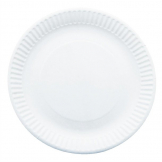 Paper Plates 229mm (Pack of 250)