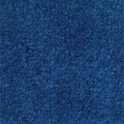 Coba Entrance Barrier Mat 0.6 x 0.9m Blue